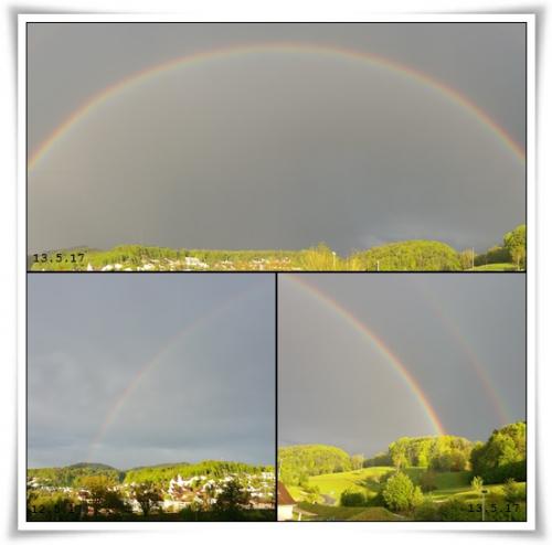 collage 12 und 13 mai.jpg