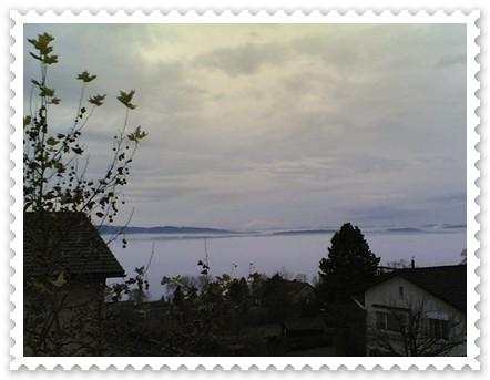 nebelmeer marke.jpg